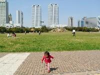 広い広場と高層ビル